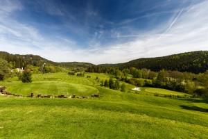 golfplatz cihelny p406199